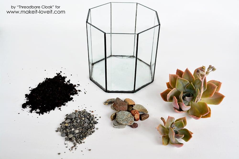 How To Make A Succulent Terrrarium